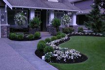 Landscaping / Landscaping Gardening