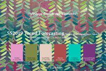 trend p/e 19