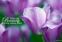 #FloralFriday