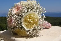 Kefalonia fairytale romance / young love & laughter