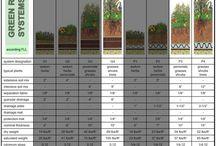 Design / Landscape Architecture