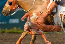 Horse Entertainers