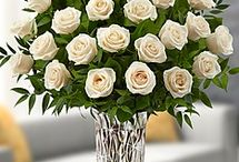 Rosas diversas