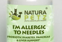 I'm Allergic to Needles / I'm Allergic To Needles is used holistically to support normal blood sugar levels; to improve insulin utilization; to combat Diabetes I & Diabetes II;  to reduce glucose levels in the blood; to improve the glycemic index; for hypoglycemia; for insulin resistance; to promote pancreatic health to produce adequate insulin; to support normal blood sugar levels; to promote cardiovascular health by reducing the risk of arteriosclerosis & atherosclerosis related to insulin resistance.