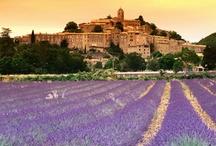 Provence mon amour !