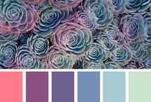 design warna