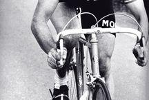 bicycle . vélo . fahrrad