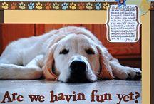 Doggy scrapbook layouts