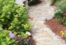Side yard project / by Patty Evans