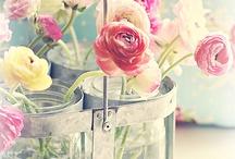 Bouquet / Kytice