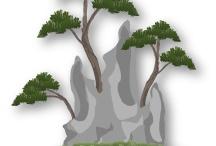 The new Bonsai styles / The new Bonsai style images, at www.bonsaiempire.com/train/bonsai-styles  Thanks to Sean Coleman! / by Bonsai Empire