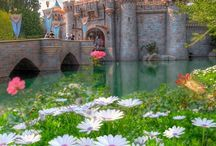 Disneyland sweet disneyland