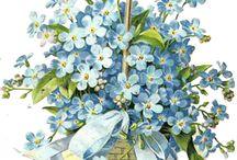 flower / by Atsuko