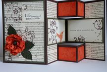 Fancy Fold cards / by Vicki Vetrano Sopcak