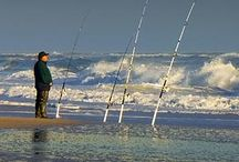 Great Fishing Tips / Ideas and tips about or around fishing.