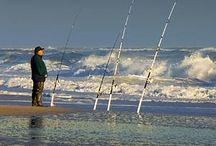 Surf fishing / Surf fishing