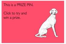 Prize Pins 3