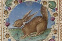 Bestiaire médiéval / Peinture, dessin