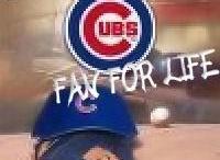 Chicago Cubs / by Regina Bunger Hanson