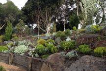 native rock garden design ideas