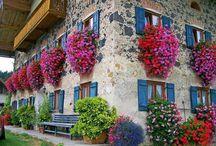 Flores na fachada