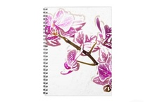 ase Notebook / Notebooks / by aspen rose arts