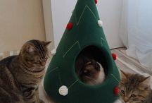 Árvore de natal gato