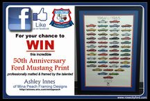 Contests / Rose City Ford Give-Aways
