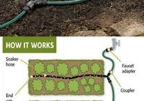 Garden (Irrigation)