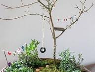 Fairy garden in front alcove