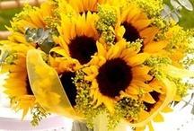 French sunflower themed weddings / Sunflower themes