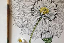 motívumok, minták, ornamentikák