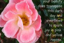Inspirational Quotes / Inspirational quotes, spiritual journey, science of being, spiritual growth,