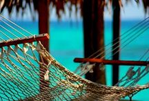 Love a good Hammock (its all in the location) / by Wendy Levitzke
