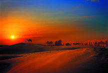 ORIENTE MEDIO / Imágenes de Dubai, Abu Dhabi