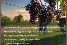 CSDN Hijab Quotes / Sumber cahaya hati dan penyejuk jiwa.