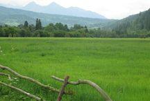 Farm poland bialystok