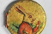 Bunny rabbits / by Sue Franklin