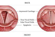 Dây thanh đới và cách kiểm soát giọng hát / Dây thanh đới (vocal folds/ vocal cords/vocal reeds) chính là một cặp dây bằng màng nhầy được kéo căng từ sau ra trước, nằm bên trong thanh quản (larynx). Chúng rung động do sự đẩy hơi từ phổi để tạo ra âm thanh (nói, hát, la hét…). Vậy giây thanh đới có cấu tạo và chức năng đặc biệt gì? Chúng ta hãy cùng tìm hiểu qua bài viết sau đây nhé! Chúc các bạn ngày mới vui vẻ!
