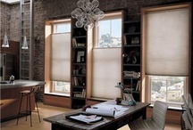 Hunter Douglas Honeycomb Shades / Monarch Paint & Wallcoverings is a Hunter Douglas dealer.  We provide a wide variety of the entire line of Hunter Douglas window treatment products.  Check out some of our inspirations for Honeycomb Shades.
