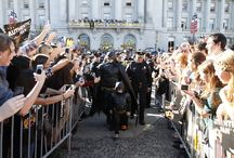 Batkid Begins / A feature documentary that explores how Batkid became a phenomenon in San Francisco and worldwide