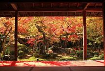 kimono / japan
