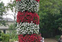 Garden Center Ideas / by Regina Martin
