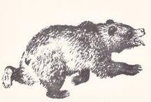 Bears / by Russian Soul Vintage