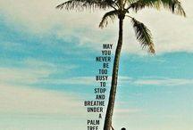 Aloha Life