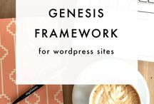 Genesis Framework / genesis framework, how to build a wordpress website, wordpress resources, website design resources, CSS, coding, website development, tips for genesis framework, WordPress, website design