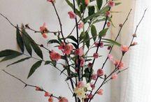 Twig & Branch / by Kristina Lacson McConnico