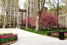 Civic Landscape Design