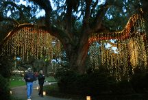 Nights of a Thousand Candles / by Brookgreen Gardens