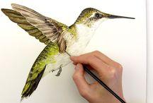 Anna mason watercolour